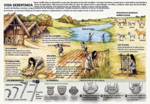 La vida durante el Neolítico Historia, Prehistoria, Rincón de la historia