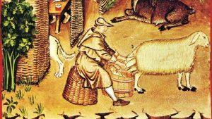 La ganadería en la Edad Media